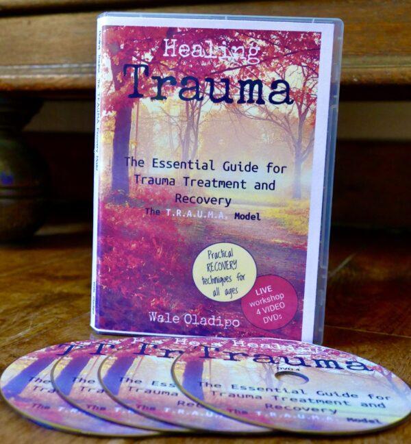 Healing Trauma DVD Set